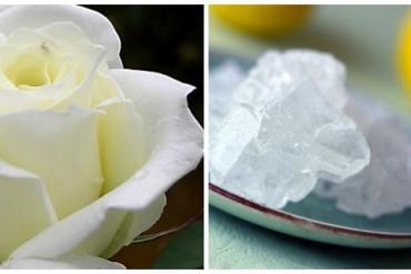 Món ăn, bài thuốc từ đường phèn